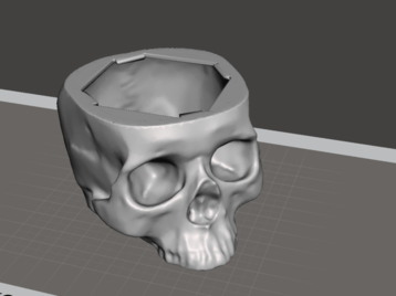 Scull for a speaker